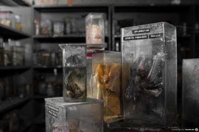 Horror Labs 3